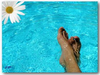 Piscine nogent sur marne - Horaires piscine de nogent sur marne ...